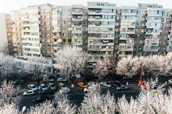 Frost auf Bäumen in der Stadt Lizenzfreies Stockbild