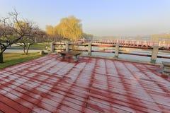 Frost auf dem roten Backstein im Winter, luftgetrockneter Ziegelstein rgb Lizenzfreies Stockbild