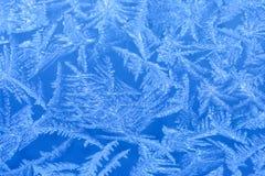 Frost auf einem Fenster Stockbilder