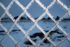 Frost auf einem Kettengliedzaun Stockfotos