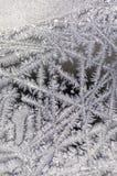 Frost auf Glas des Fensters Stockbilder