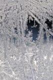 Frost auf Glas des Fensters Lizenzfreie Stockfotografie