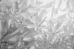 Frost background Stock Images