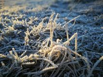 Frost background in November stock photos