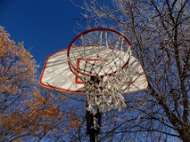 Frost on basketball net Royalty Free Stock Photography