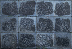 Frost on blue flagstones Stock Images
