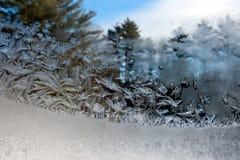 Frost-Blumen auf Fenster Stockbilder