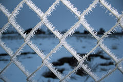 Frost on a chain link fence Stock Photos