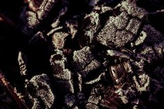 Frost on the coals in the grill or fireplace. Toned.  royalty free stock photos