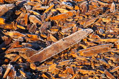 Frost coated wood chips Royalty Free Stock Photo