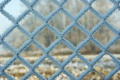 Frost cobriu na cerca prendida Imagem de Stock Royalty Free