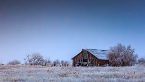 Frost cobriu o celeiro no inverno imagem de stock royalty free