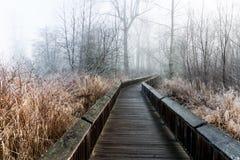Frost a couvert la promenade d'itinéraire aménagé pour amateurs de la nature dans les arbres photo stock