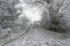 Frost covered footpath Stock Photography