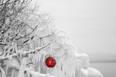 Red Christmas ornament hanging on an ice covered tree. Frost covered red Christmas ornament hanging on an icicle covered tree Royalty Free Stock Photography