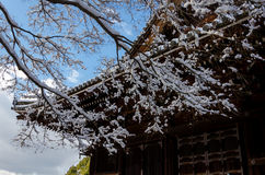 Frost covered temple, winter in Kyoto Japan Royalty Free Stock Image