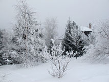 Frost-covered village house and trees Stock Photos
