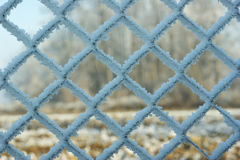 Frost covered on wired fence. Full of crystals Royalty Free Stock Image