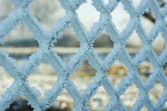 Frost covered on wired fence. Full of crystals Stock Images