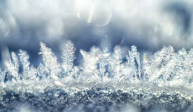 Frost crystals. Stock Photography