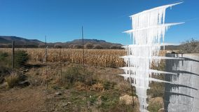 Frost dans le Karoo Images stock