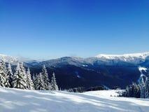 Frost in den Bergen machte einen magischen Wald Stockfoto