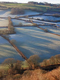 Frosty morning at Great Torrington in North Devon  Royalty Free Stock Photo