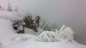 Frost em montanhas gigantes/Karkonosze Foto de Stock