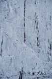 Frost en ramas de un árbol Foto de archivo