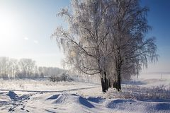 Frost et le soleil sur Russias photographie stock libre de droits