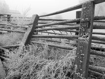 Frost on farm fence. Hoar frost on farm fence in black and white royalty free stock images