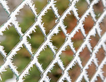 Frost on the fence Stock Image