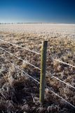 Frost Fenceline. A farm fenceline covered in thick hoarfrost on a mid winter morning stock photo