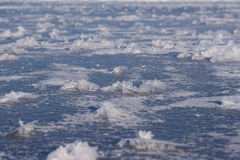Frost flowers on frozen lake Royalty Free Stock Image