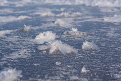 Frost flowers on frozen lake Stock Photos