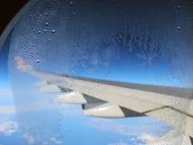 Frost frost på exponeringsglaset royaltyfri foto
