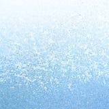 Frost glacial le matin d'hiver Photo libre de droits