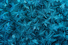 The frost on the glass Royalty Free Stock Images