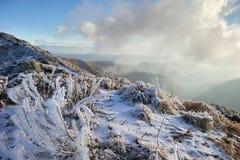 Frost i bergen Arkivfoto