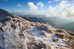 Frost i bergen Arkivbilder