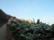 Frost i den gamla tyska staden Arkivfoto