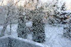 Frost i fönster arkivbilder