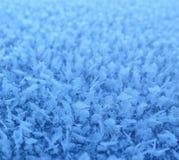 Frost i vinter Fotografering för Bildbyråer