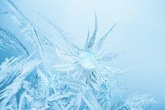 Frost ice macro Royalty Free Stock Photos