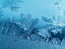 Frost icy flowers on a glass Royalty Free Stock Photography