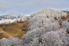 Frost land in the Carpathian Mountain and Transylvania village Royalty Free Stock Photography