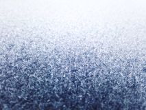 Frost Royalty Free Stock Image