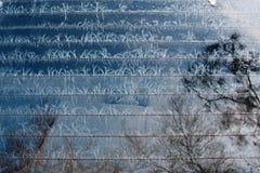 Frost mönstrar på exponeringsglas Royaltyfria Foton