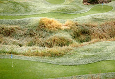 Frost on a mini-golf lawn Stock Photography