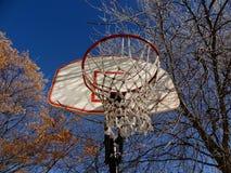 Frost na rede do basquetebol Fotografia de Stock Royalty Free